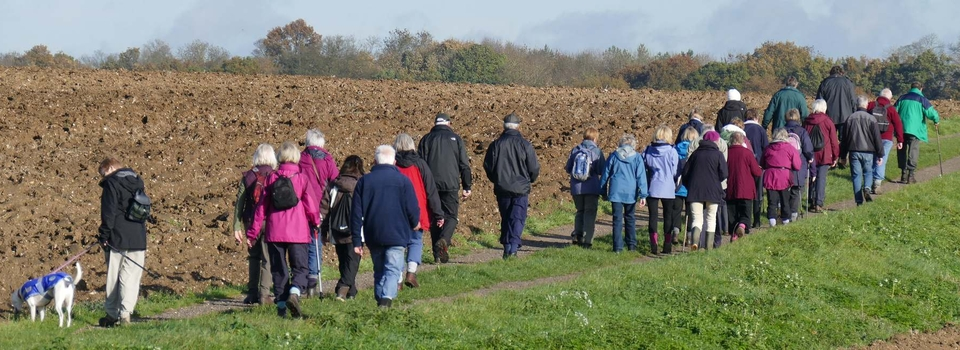 U3A-Walking-Group- 960x350