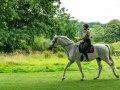 Riding-Hugh-Herdon-red