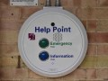 Help-David-Solomon
